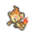 Chimchar icon.png
