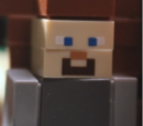 Steve (TALM)