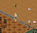 Sims de Vizinhança 1