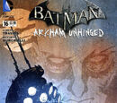 Batman: Arkham Unhinged Vol 1 16