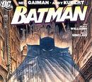 Batman Vol 1 686