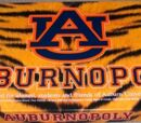 Auburn-opoly
