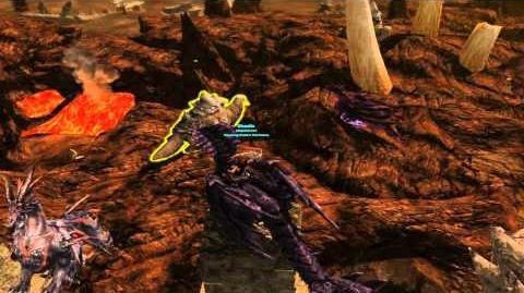 Recursive Nightmare 100% Pathway ( Dragon's Prophet )