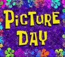 Picture Day (gallery)