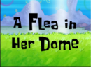 A Flea in Her Dome.PNG