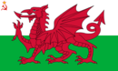 Flag of Welsh SSR (worcester- UDI 1996).png