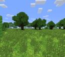 Overgrown Island