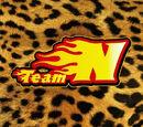 Team N