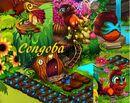 Congoba bb.jpg