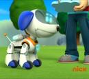 Robo-Dog/Appearances