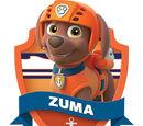 Zuma/Gallery