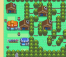Solaceon Town