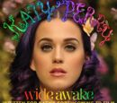Wide Awake (song)