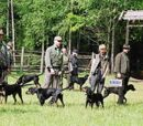 Próby i konkursy pracy psów myśliwskich