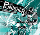 Punisher Vol 10 2
