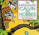 Независимые Кельвин и Хобс