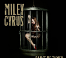 Can't Be Tamed (song)