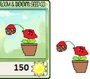 Melon's plants