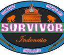 Brian's Facebook Survivor 9: Indonesia