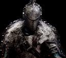 Dragonknight Robes
