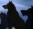 El Consejo de Lobos