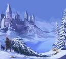 Magi Settlement