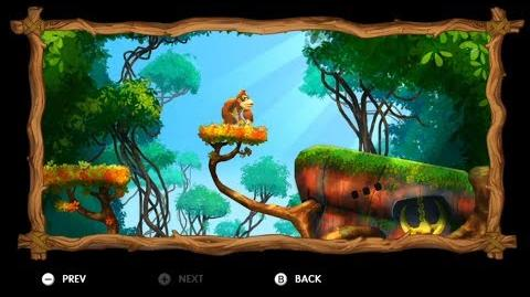 Donkey Kong Country Tropical Freeze - Level 1-A Zip-Line Shrine Letters KONG Puzzle Pieces