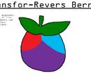 Transfor-Revers Berry