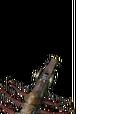 Avelyn (Dark Souls II)