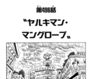 Chapter 496