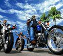 Harley-Davidson & L.A. Riders
