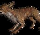 Лисиця (Skyrim)