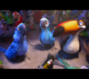 Птичий клуб