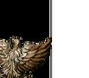 Golden Falcon Shield