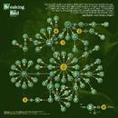 Breaking Bad Molecule Infographic XL.png