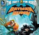 Batman and Robin: The Hunt for Robin