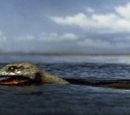 Giant Sea Serpent