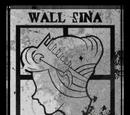 Стена Сина