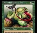 Anurid Swarmsnapper