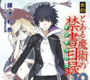 Shinyaku Toaru Majutsu no Index Light Novel Volume 10