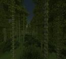 Topaz Biomes