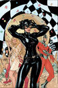 Catwoman Vol 4 30 Textless.jpg