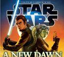 Brandon Rhea/REVIEW: A New Dawn
