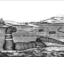 Gloucester Sea Serpent