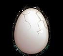 Pet - Egg