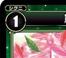 Salvia, Natural Plant