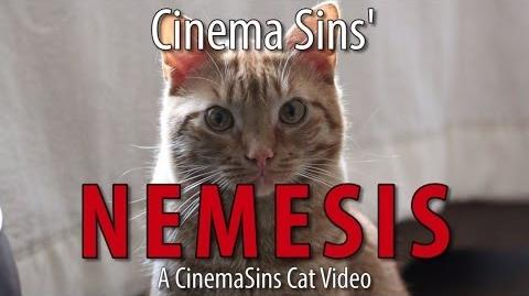 The Nemesis Of Cinema Sins A Cinema Sins Cat Video