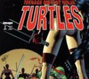 Teenage Mutant Ninja Turtles issue 2 (Image)