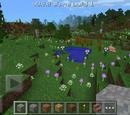 Bosque florido