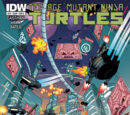 Dimension X (IDW)